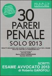 30 pareri penale. Solo 2013