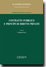 Contratto pubblico e principi di diritto privato