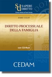 Diritto processuale della famiglia