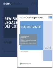 Due diligence e  Revisione