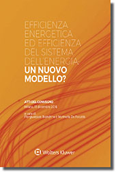 Efficienza energetica ed efficienza del sistema dell'energia: un nuovo modello?