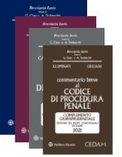 Esame avvocato 2019 - 4 Commentari CEDAM (Civile + Procedura Civile + Penale + Procedura penale)