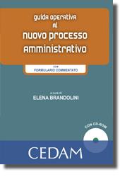 Guida operativa al nuovo processo amministrativo