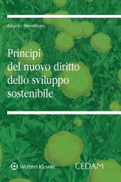 I principi del nuovo diritto dello sviluppo sostenibile