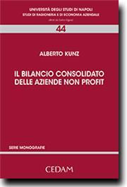 Il bilancio consolidato delle aziende non profit