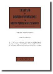 Il contratto collettivo di lavoro all'indomani della privatizzazione del pubblico impiego