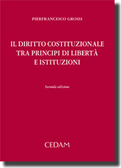 Il diritto costituzionale tra principi di libertà e istituzioni