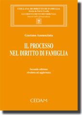 Il processo nel diritto di famiglia