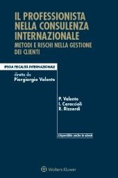 Il professionista nella consulenza internazionale