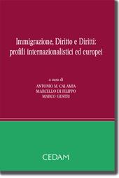 Immigrazione, Diritto e Diritti: profili internazionalistici ed europei