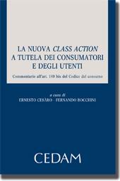La nuova Class Action a tutela dei consumatori e degli utenti
