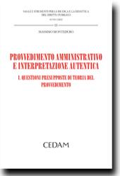 Provvedimento amministrativo e interpretazione autentica