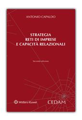 Stategia, reti di impresa e capacità relazionali