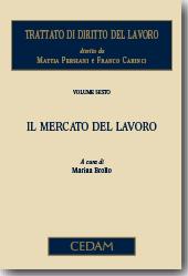 Trattato di diritto del lavoro. Vol. VI - Il mercato del lavoro