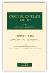eBook - Codice dei Contratti Pubblici - Art. 83 Criteri di Selezione e Soccorso Istruttorio